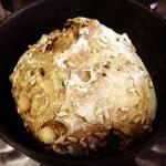 Esse é especial! Pão de longa fermentação com macadâmia, semente de girassol e nozes! Tem que estar inspirado! Pode ser consumido por pessoas com hipersensibilidade ao glúten! Receita nos comentários! çãonatural çãolonga    çúcar çãofuncional